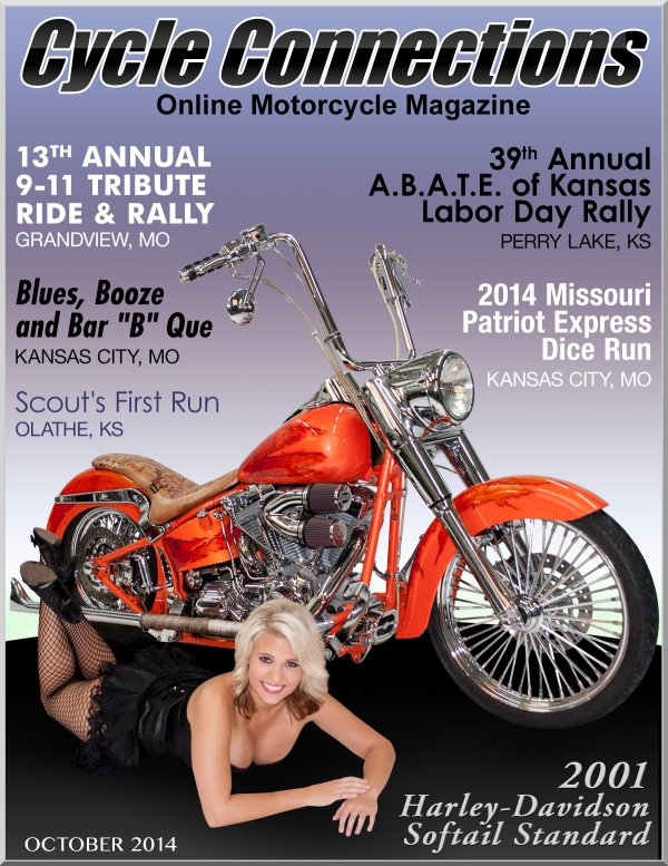 2001 Harley-Davidson Softail Standard and Cover Model Danielle
