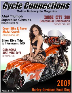 2009 Harley-Davidson Road King and Cover Model Amber