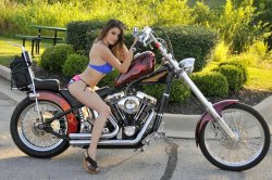 Cover Bike & Cover Model Search at Gail's Harley-Davidson - Grandview, Missouri