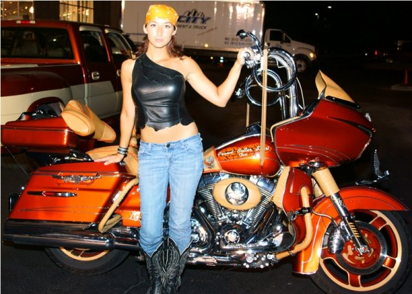 Cover Bike & Cover Model Search at Blue Springs Harley-Davidson - Blue Springs, Missouri