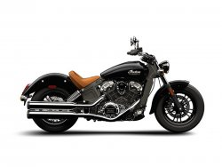 2015 Indian® Scout™